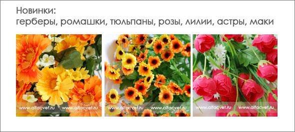 Цветы брянск оптом